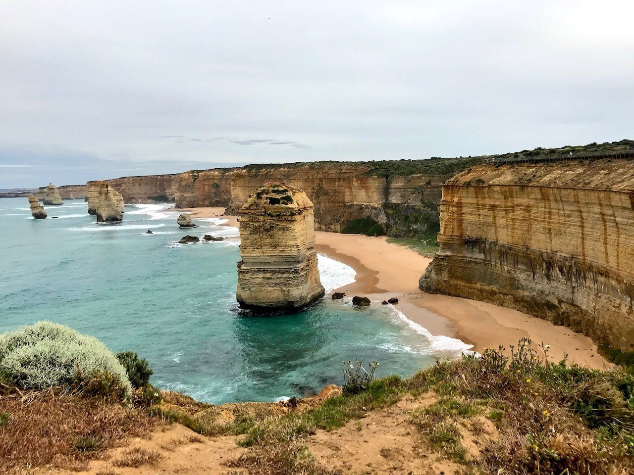 Our Great Ocean Road Tour – Wildlife & Raging Coastlines
